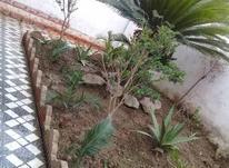 اجاره روزانه ویلا استخردار و معمولی بابلسرو سرخرود در شیپور-عکس کوچک