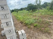 فروش زمین باغی 1000 متری  در شیپور-عکس کوچک