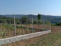 فروش زمین مسکونی 750 متر یا 2تا 375 قائم شهر، روستای ابوصالح در شیپور