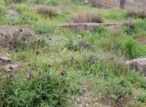 زمین مسکونی 160 متر در نوکند هشتگرد  در شیپور-عکس کوچک