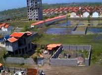 فروش زمین ساحلی 160متری ویو دریا در شیپور-عکس کوچک