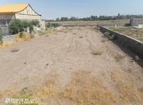 زمین ، زمین کشاورزی ، لنگرود در شیپور-عکس کوچک