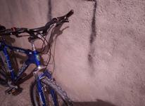 دوچرخه آبی در شیپور-عکس کوچک