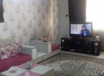 آپارتمان 75 متر در گلشهر، 20متری انقلاب در شیپور-عکس کوچک