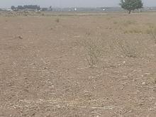 فروش زمین 4000 متر در محمدیه در شیپور