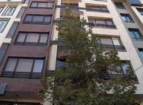 فروش آپارتمان 118 متر در تهرانپارس شرقی در شیپور-عکس کوچک