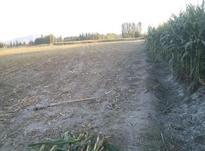 زمین زراعی. در شیپور-عکس کوچک