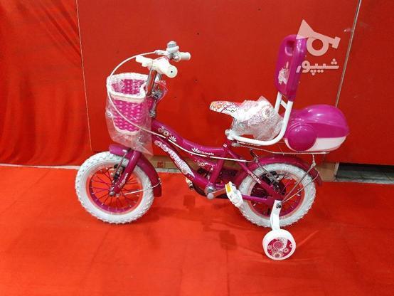 دوچرخه 12 المپیا دخترانه در گروه خرید و فروش ورزش فرهنگ فراغت در قزوین در شیپور-عکس2
