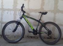 دوچرخه المپیا 26 در شیپور-عکس کوچک