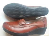 دوجفت کفش سایز 38 در شیپور-عکس کوچک