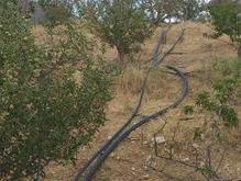 زمین جهت ساخت ویلا در شیپور