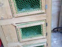 قفس سه طبقه در شیپور