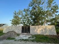 فروش زمین 250 متر در لنگرود در شیپور