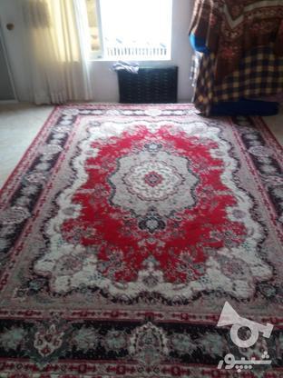 فرش 12 متر در حد نو در گروه خرید و فروش لوازم خانگی در مازندران در شیپور-عکس1