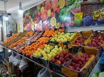 کارگر ساده میوه فروشی در شیپور-عکس کوچک