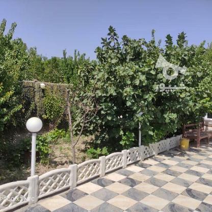 باغ ویلا 585 متری در ملارد در گروه خرید و فروش املاک در تهران در شیپور-عکس13