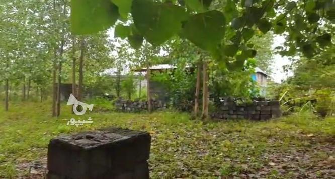 913 متر بنای دوبلکس نیمه کاره در آستانه در گروه خرید و فروش املاک در گیلان در شیپور-عکس2