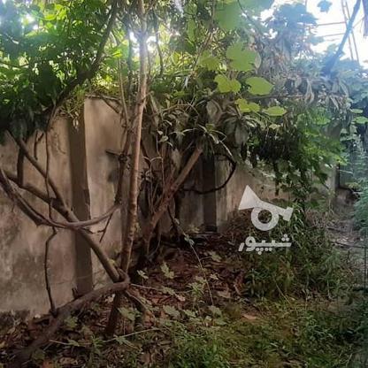 150 متر خانه  در گروه خرید و فروش املاک در گیلان در شیپور-عکس2