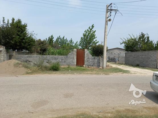 زمین 150متری دو نبش در گروه خرید و فروش املاک در مازندران در شیپور-عکس1