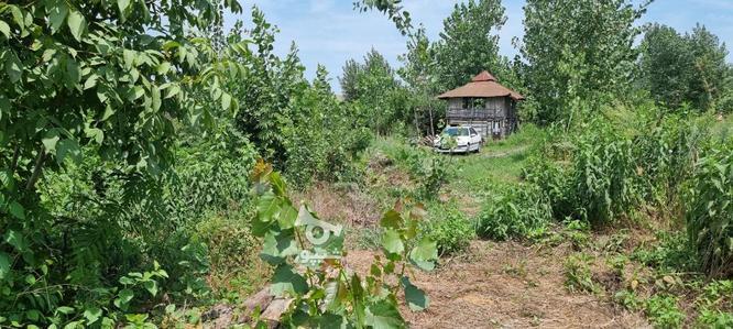 فروش زمین 1440 متر در لنگرود در گروه خرید و فروش املاک در گیلان در شیپور-عکس4