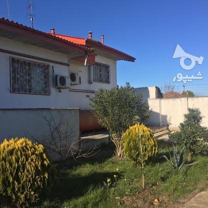 4567 متر ویلای استخردار در کیاشهر در گروه خرید و فروش املاک در گیلان در شیپور-عکس14