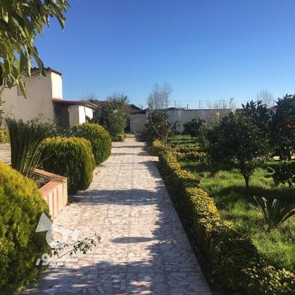 4567 متر ویلای استخردار در کیاشهر در گروه خرید و فروش املاک در گیلان در شیپور-عکس18