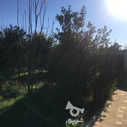 4567 متر ویلای استخردار در کیاشهر در گروه خرید و فروش املاک در گیلان در شیپور-عکس12