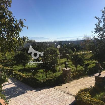 4567 متر ویلای استخردار در کیاشهر در گروه خرید و فروش املاک در گیلان در شیپور-عکس4