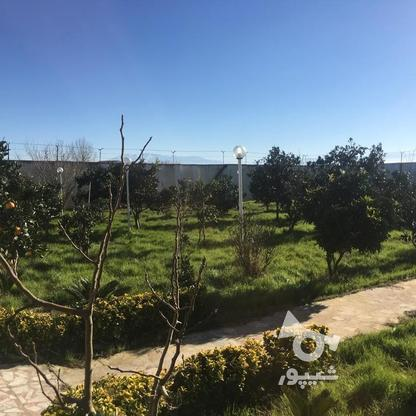 4567 متر ویلای استخردار در کیاشهر در گروه خرید و فروش املاک در گیلان در شیپور-عکس8