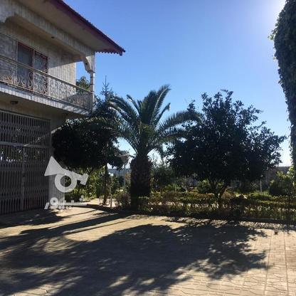4567 متر ویلای استخردار در کیاشهر در گروه خرید و فروش املاک در گیلان در شیپور-عکس2