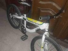 دوچرخه حرفه ای ویوا تریال در شیپور