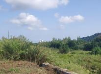 فروش فوری زمین بافت در شیپور-عکس کوچک
