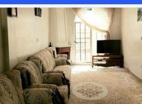 اجاره آپارتمان 56 متر در مجیدیه در شیپور-عکس کوچک