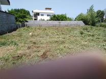 فروش زمین مسکونی 488 متر در چالوس در شیپور