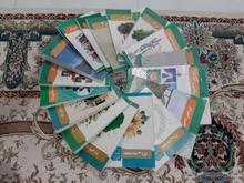 کتاب های درسی دبیرستان انسانی در شیپور