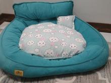 تخت سگ یا گربه در شیپور