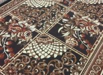 یک تخته فرش 9متری در شیپور-عکس کوچک