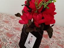 انواع گل های رو میزی و دکوری در شیپور