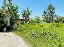 فروش زمین مسکونی 310 متر در آستانه اشرفیه در شیپور-عکس کوچک