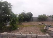 فروش زمین مسکونی 111 متر در بلوار ذوالفقاری،باقرتنگه در شیپور-عکس کوچک