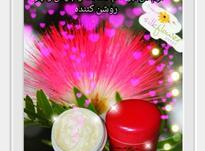 کرم گل ابریشم تهیه شده از مواد طبیعی در شیپور-عکس کوچک