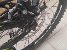 دوچرخه المپیا حرفه ای در شیپور