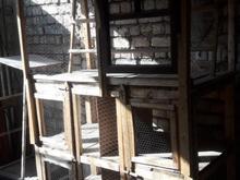 قفس کبوتر تمیز وسالم در شیپور