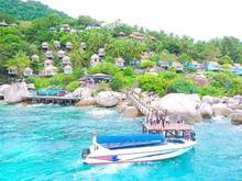 تور سواحل تایلند در شیپور