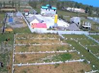 فروش زمین مسکونی 221 متر در چاف و چمخاله در شیپور-عکس کوچک
