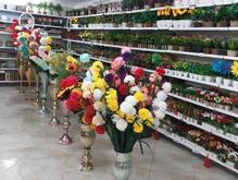 استندگل شلف دیواری گل گلدان مصنوعی انگورکریستالی در شیپور
