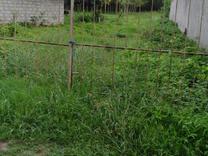 فروش زمین روستایی مناسب برای سرمایه گذاری در شیپور