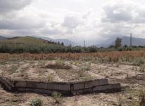 زمین مسکونی 100 متری روبروی دبیرستان شاهد آزادشهر در شیپور-عکس کوچک
