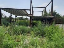 فروش زمین 300 متر با اسکلت ویلایی در قائمشهر-روستای ساروکلا در شیپور