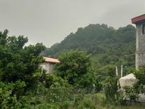 فروش زمین مسکونی 227 متر در لنگرود پرشکوه در شیپور
